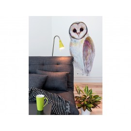 Santamans Owl / Vinyl