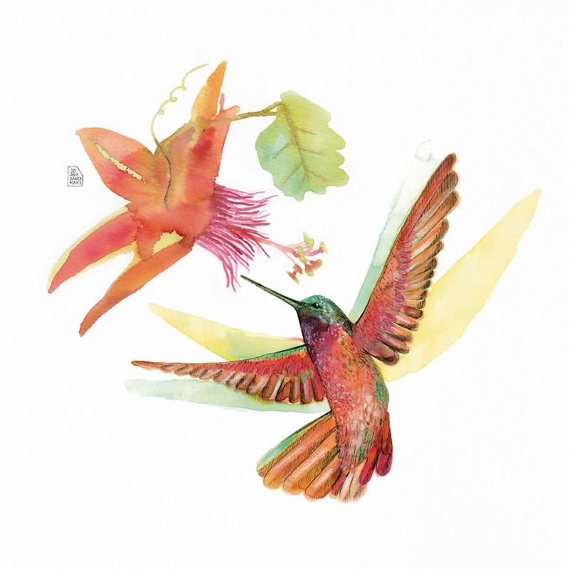 Hummingbird Love (flor Filaments)