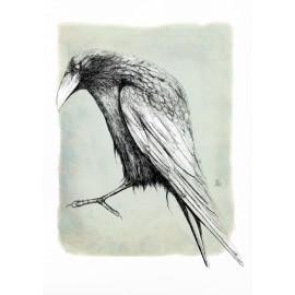 corb linea