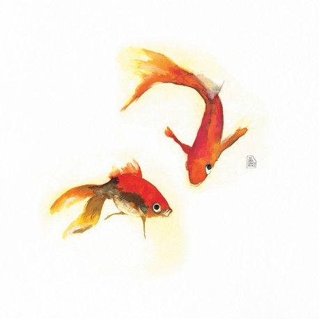 Orange fishes