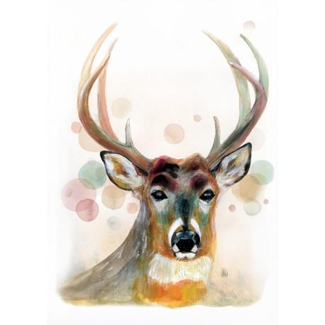 Rosabella's Deer