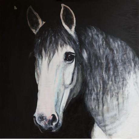 Cavall blanc