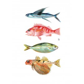 4 fishies