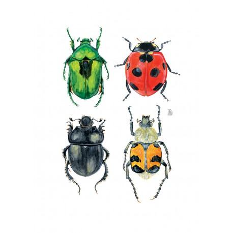 4 cockroaches