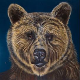 Major bear