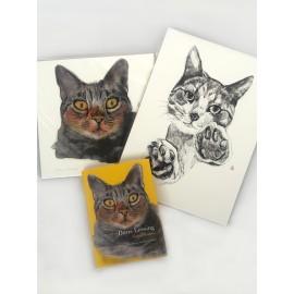 Pack Gatos ilustres