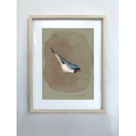 Swallow framed