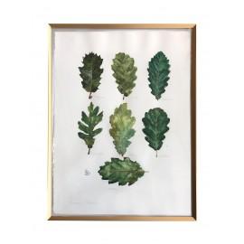 Framed Original Oak